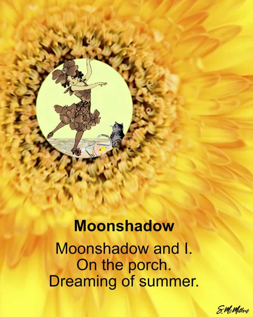 Moonshadow - red thread poetry